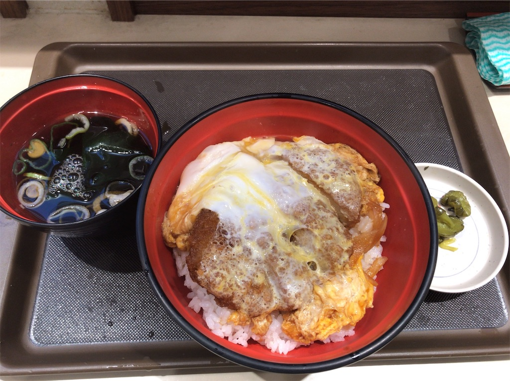f:id:yokohamamiuken:20190106074944j:image