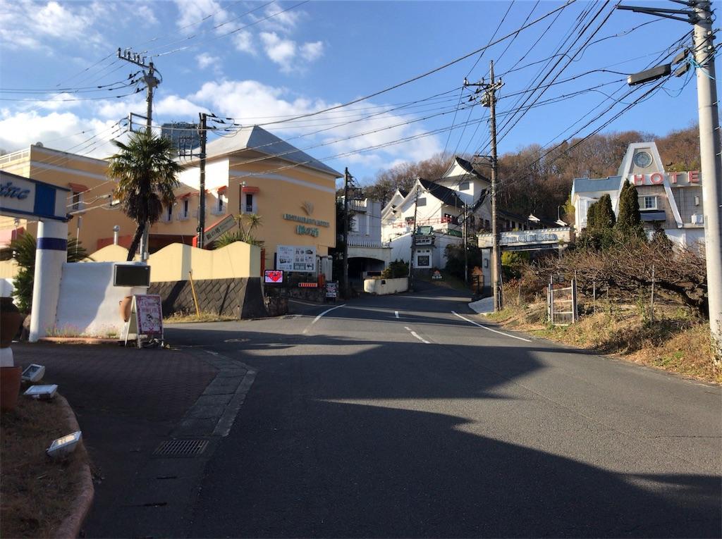f:id:yokohamamiuken:20190123134429j:image