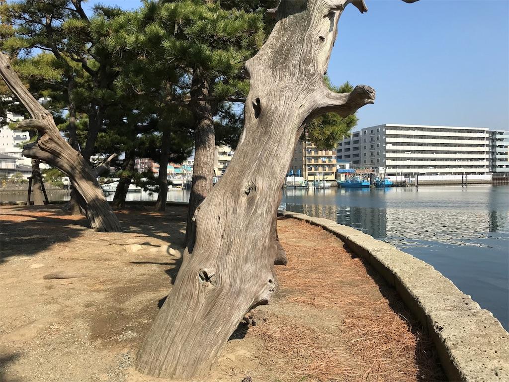 f:id:yokohamamiuken:20190220124608j:image