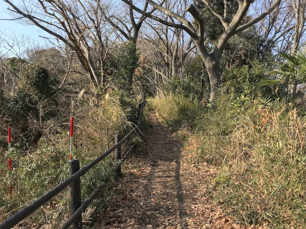 f:id:yokohamamiuken:20190220180118j:image