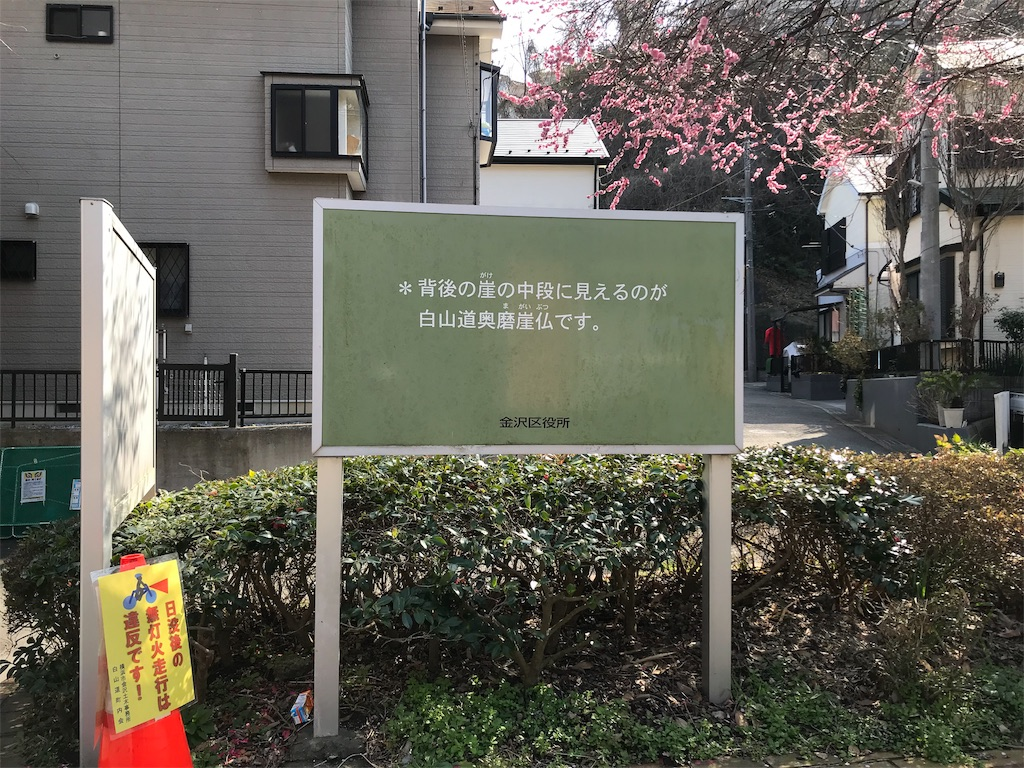 f:id:yokohamamiuken:20190220180259j:image