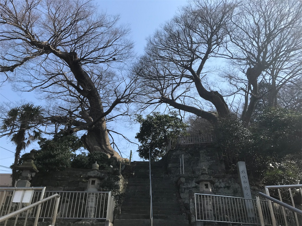 f:id:yokohamamiuken:20190302161825j:image