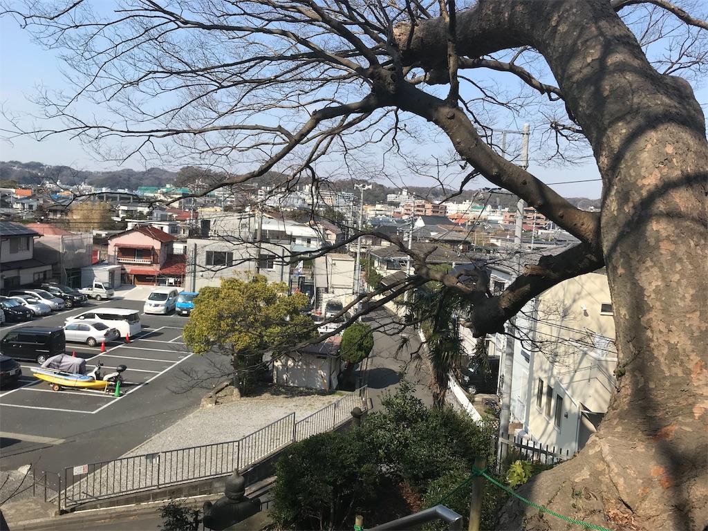 f:id:yokohamamiuken:20190302161831j:image