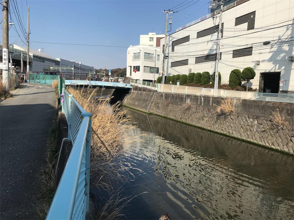 f:id:yokohamamiuken:20190302162013j:image