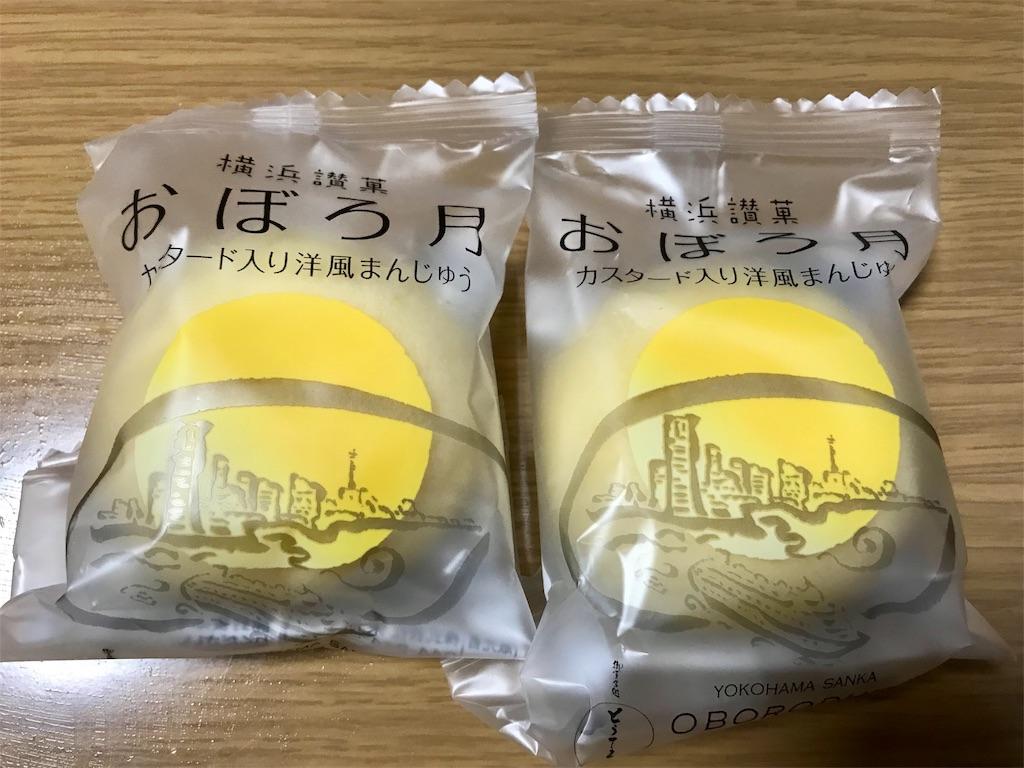 f:id:yokohamamiuken:20190304210203j:image