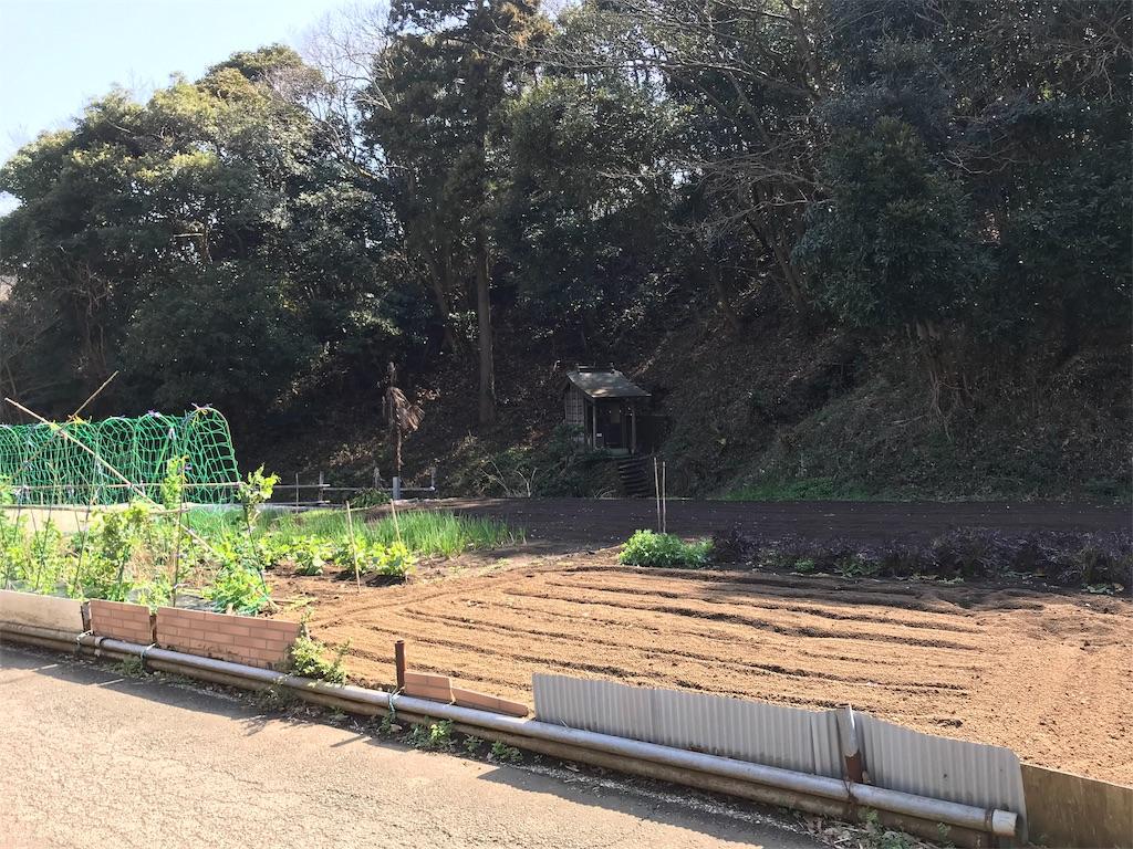 f:id:yokohamamiuken:20190306112219j:image