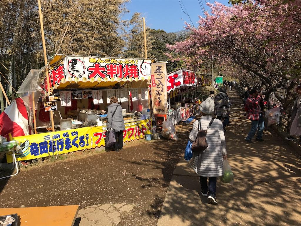 f:id:yokohamamiuken:20190306114449j:image