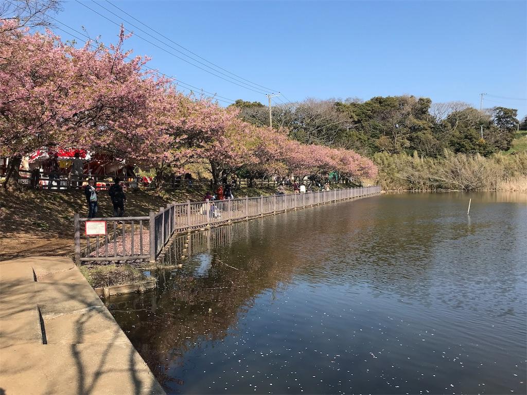 f:id:yokohamamiuken:20190306114459j:image