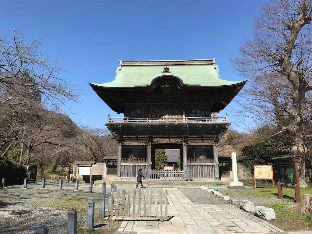 f:id:yokohamamiuken:20190308153428j:image
