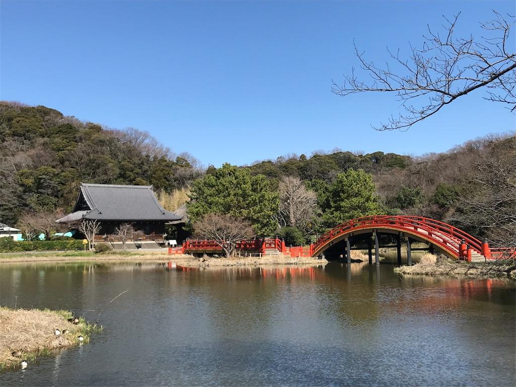 f:id:yokohamamiuken:20190308153443j:image