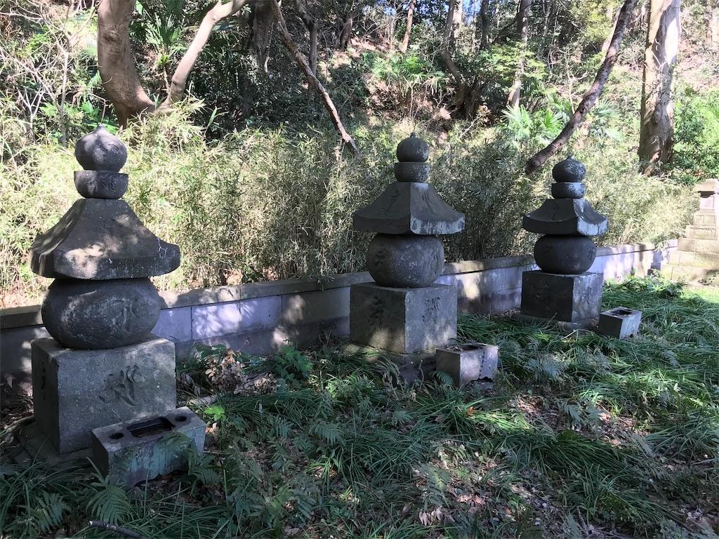 f:id:yokohamamiuken:20190308153448j:image