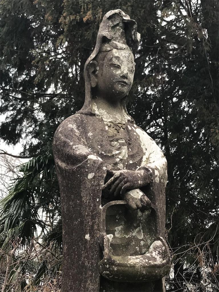 f:id:yokohamamiuken:20190314062447j:image