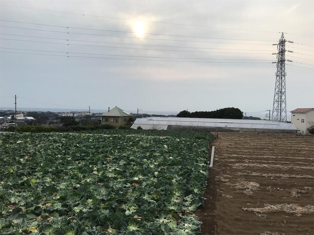 f:id:yokohamamiuken:20190315223559j:image