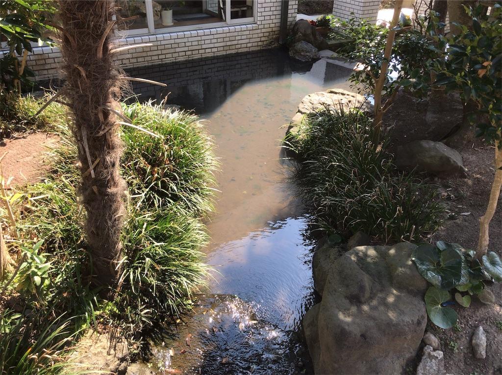 f:id:yokohamamiuken:20190315223854j:image