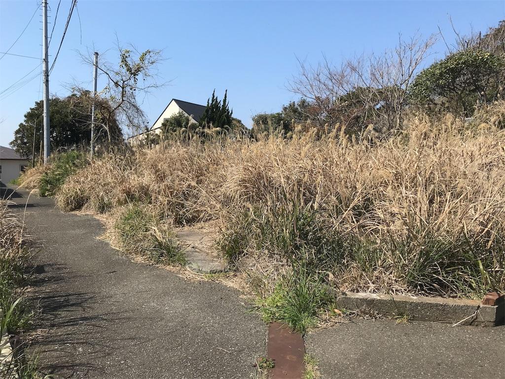 f:id:yokohamamiuken:20190315224217j:image
