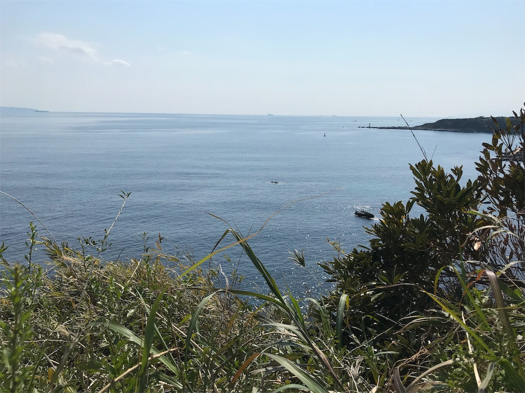 f:id:yokohamamiuken:20190315224234j:image