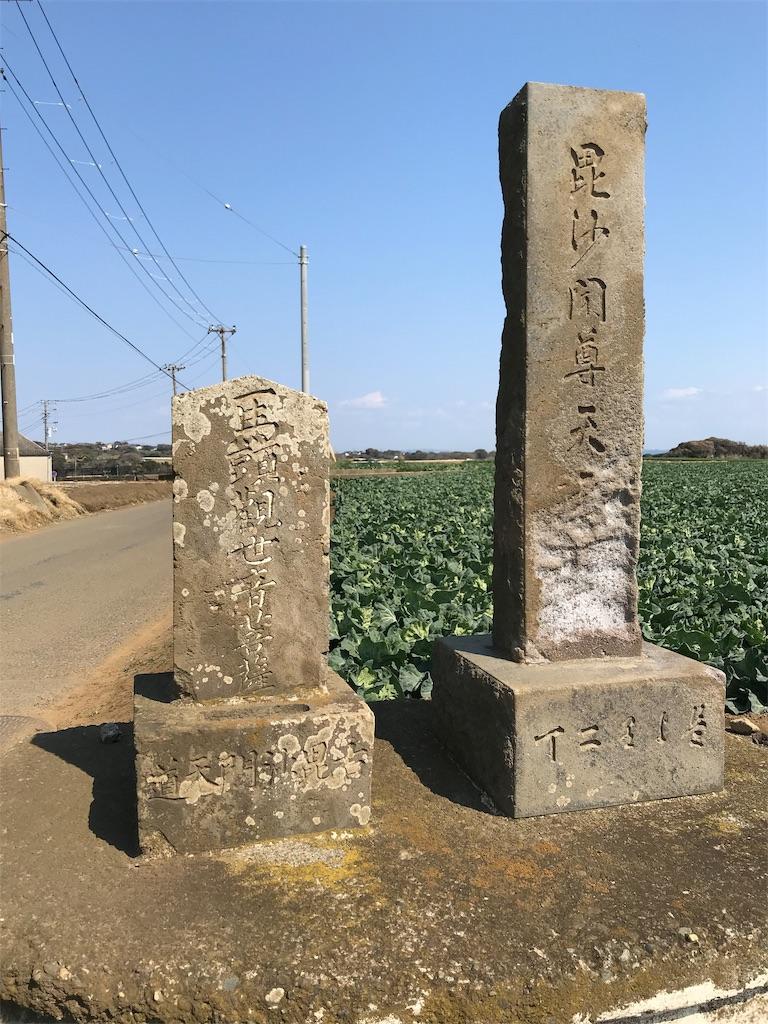 f:id:yokohamamiuken:20190315224425j:image