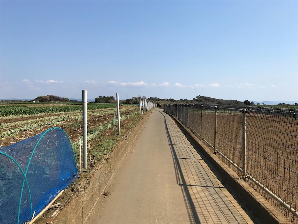 f:id:yokohamamiuken:20190315224433j:image