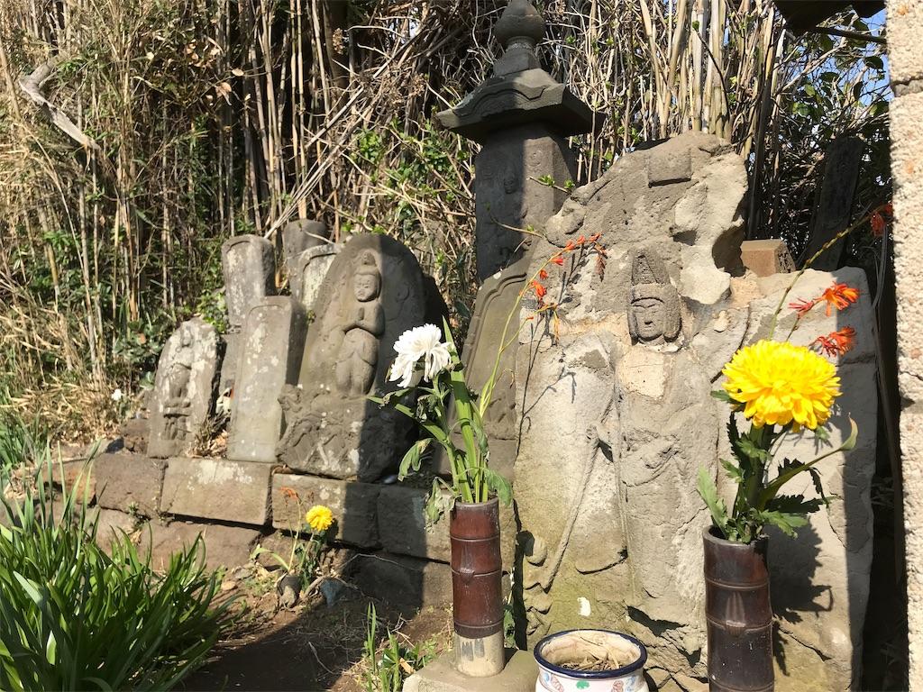 f:id:yokohamamiuken:20190315224652j:image
