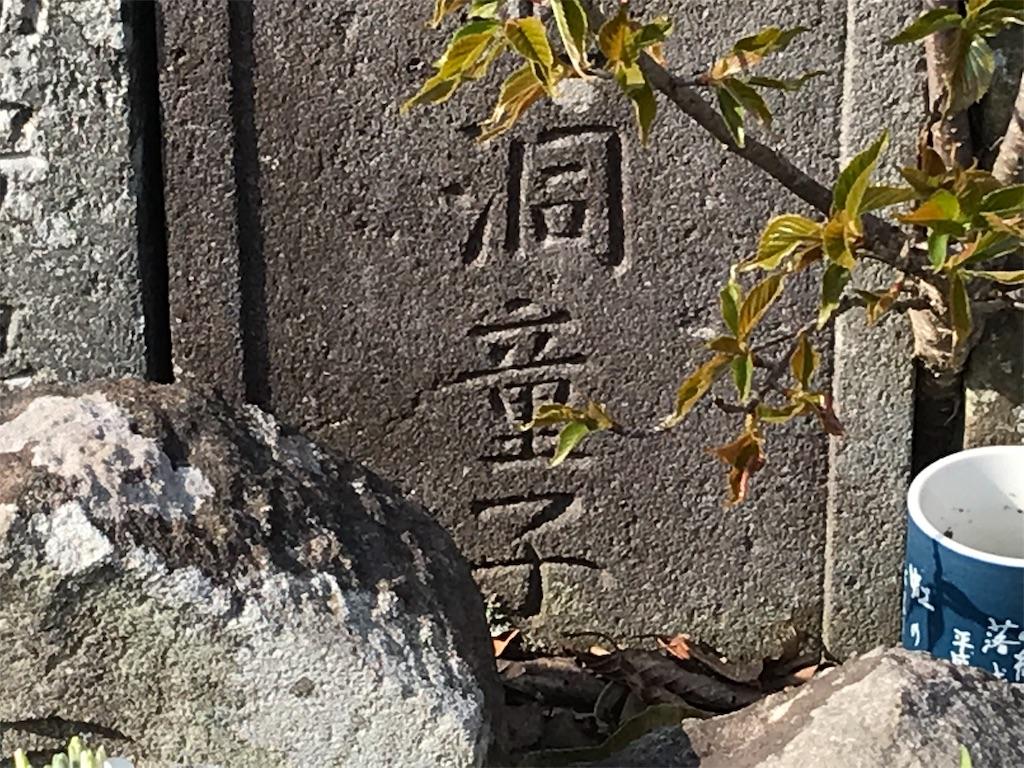 f:id:yokohamamiuken:20190315224931j:image