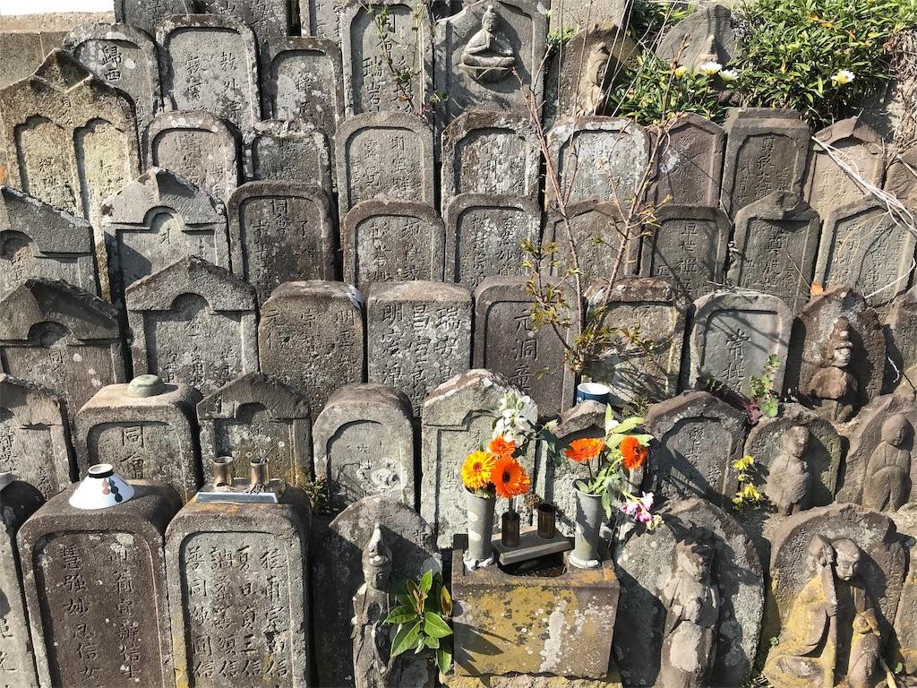 f:id:yokohamamiuken:20190315224955j:image