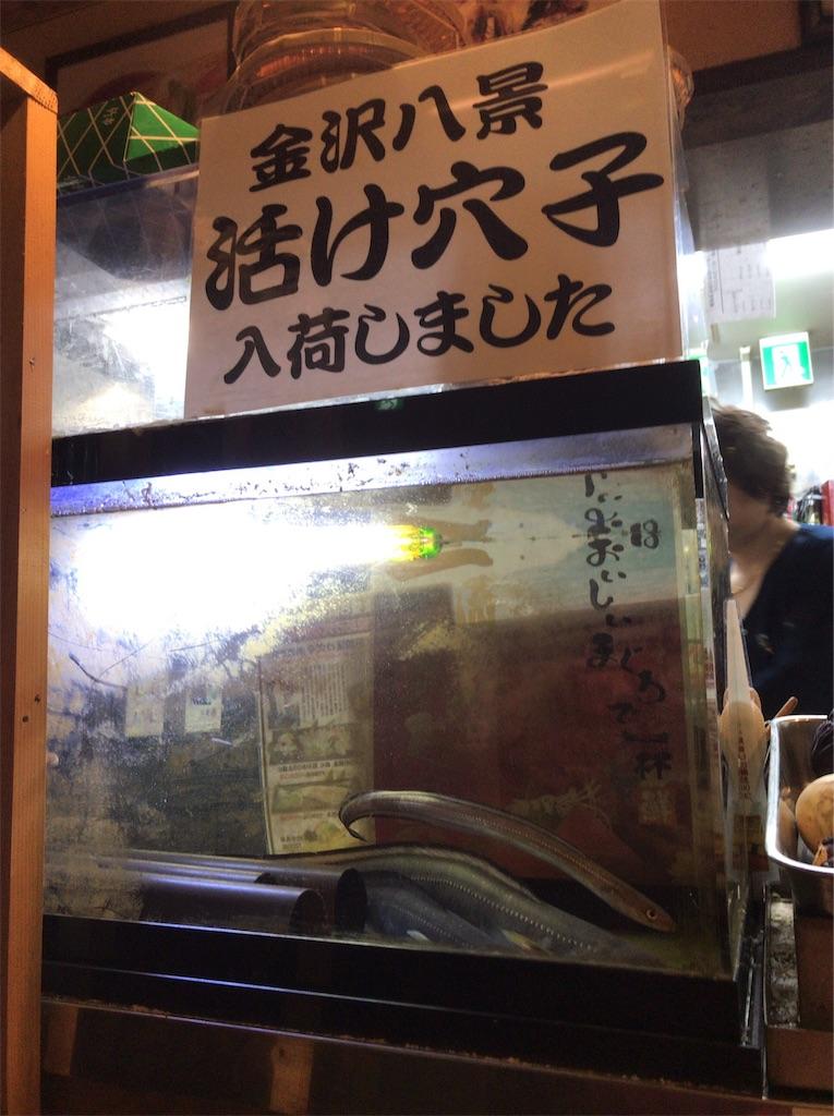 f:id:yokohamamiuken:20190319225300j:image