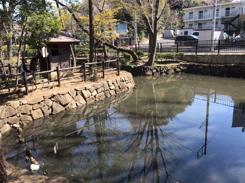f:id:yokohamamiuken:20190324154046j:image