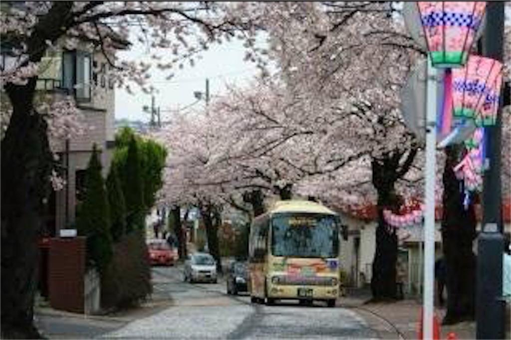 f:id:yokohamamiuken:20190324231211j:image