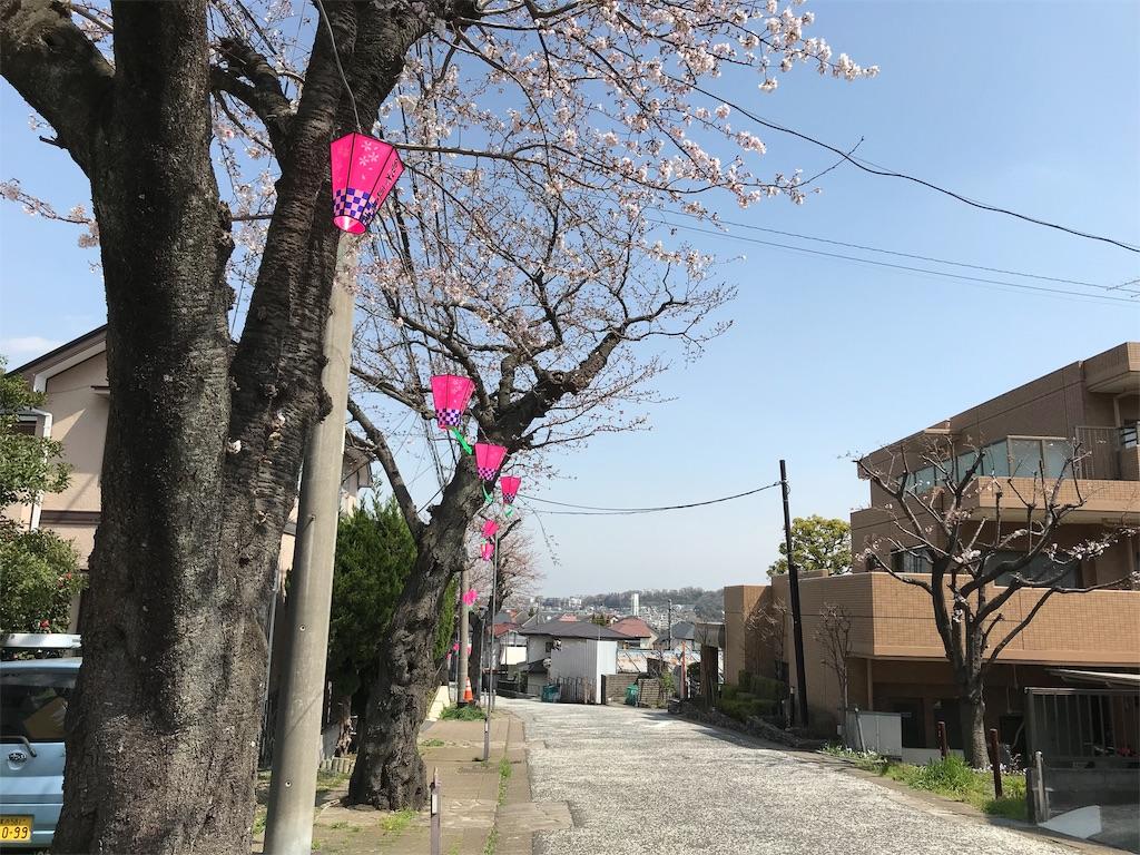 f:id:yokohamamiuken:20190325121546j:image