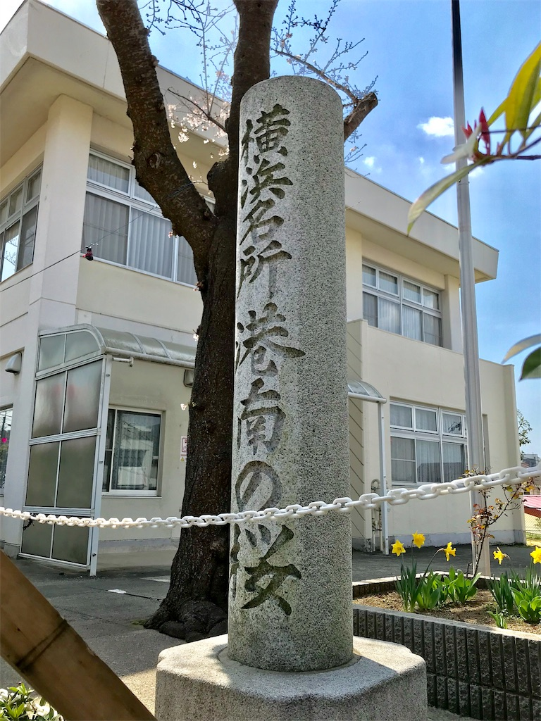 f:id:yokohamamiuken:20190325121553j:image