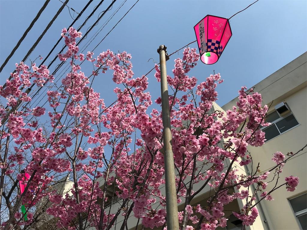 f:id:yokohamamiuken:20190325121558j:image