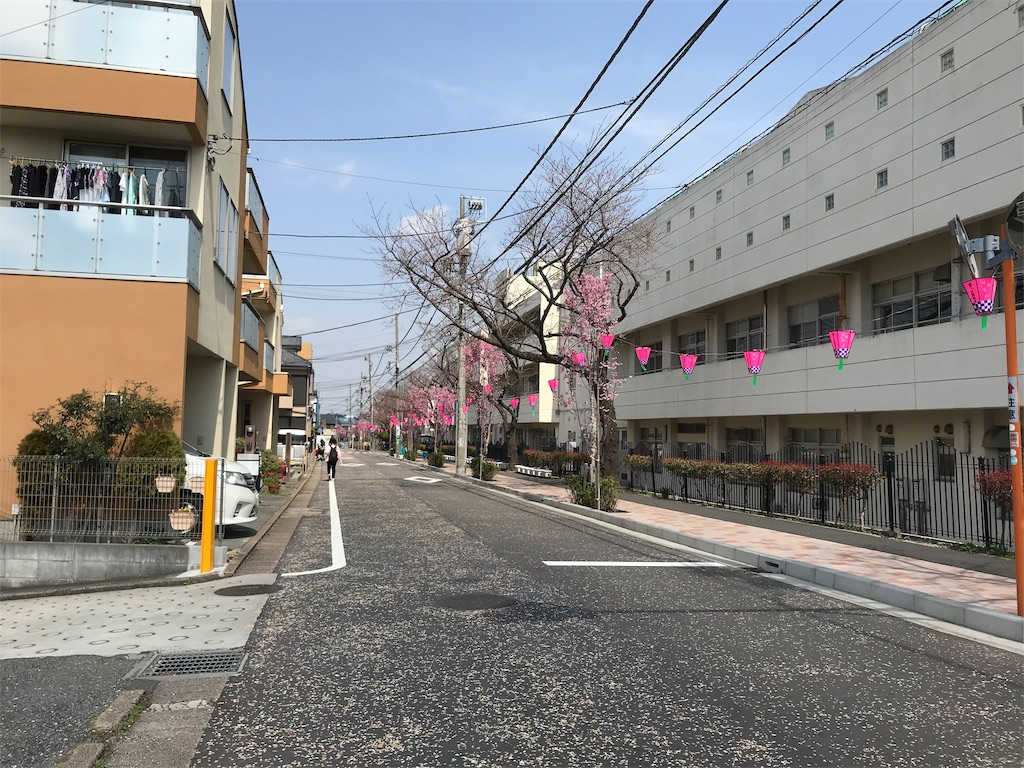 f:id:yokohamamiuken:20190325121603j:image