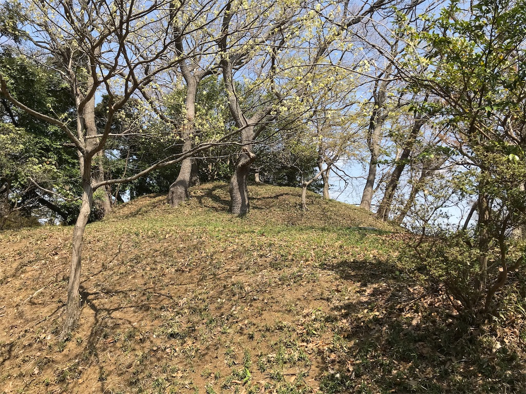 f:id:yokohamamiuken:20190325124029j:image