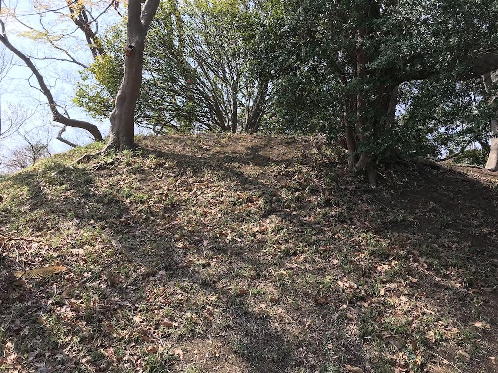 f:id:yokohamamiuken:20190325124039j:image