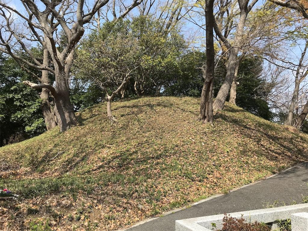 f:id:yokohamamiuken:20190325124047j:image