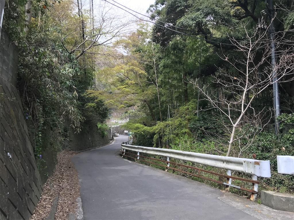 f:id:yokohamamiuken:20190328200214j:image
