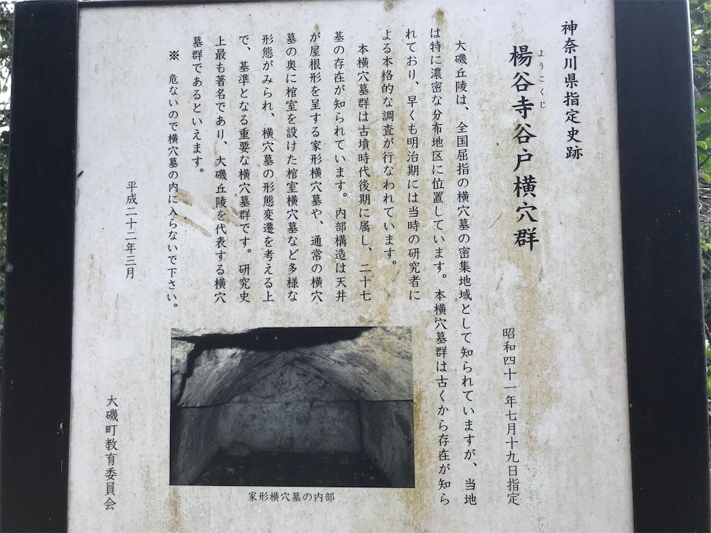 f:id:yokohamamiuken:20190328200234j:image