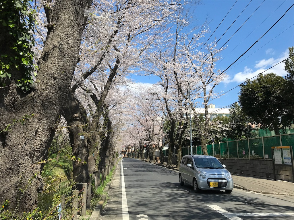 f:id:yokohamamiuken:20190404013711j:image