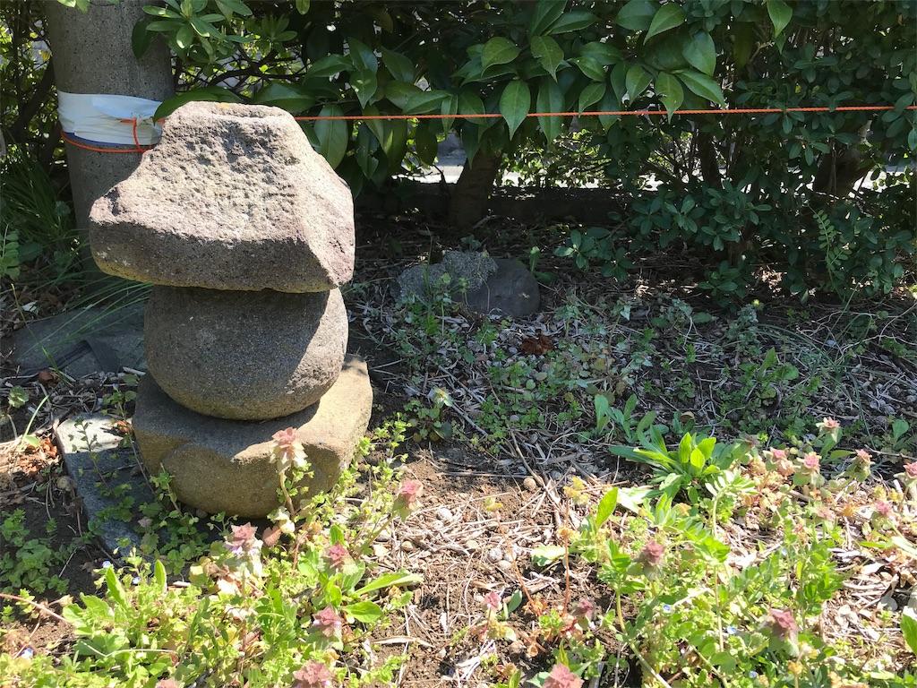 f:id:yokohamamiuken:20190404013759j:image