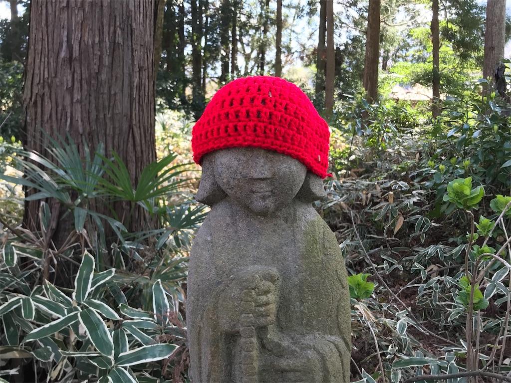 f:id:yokohamamiuken:20190404014245j:image