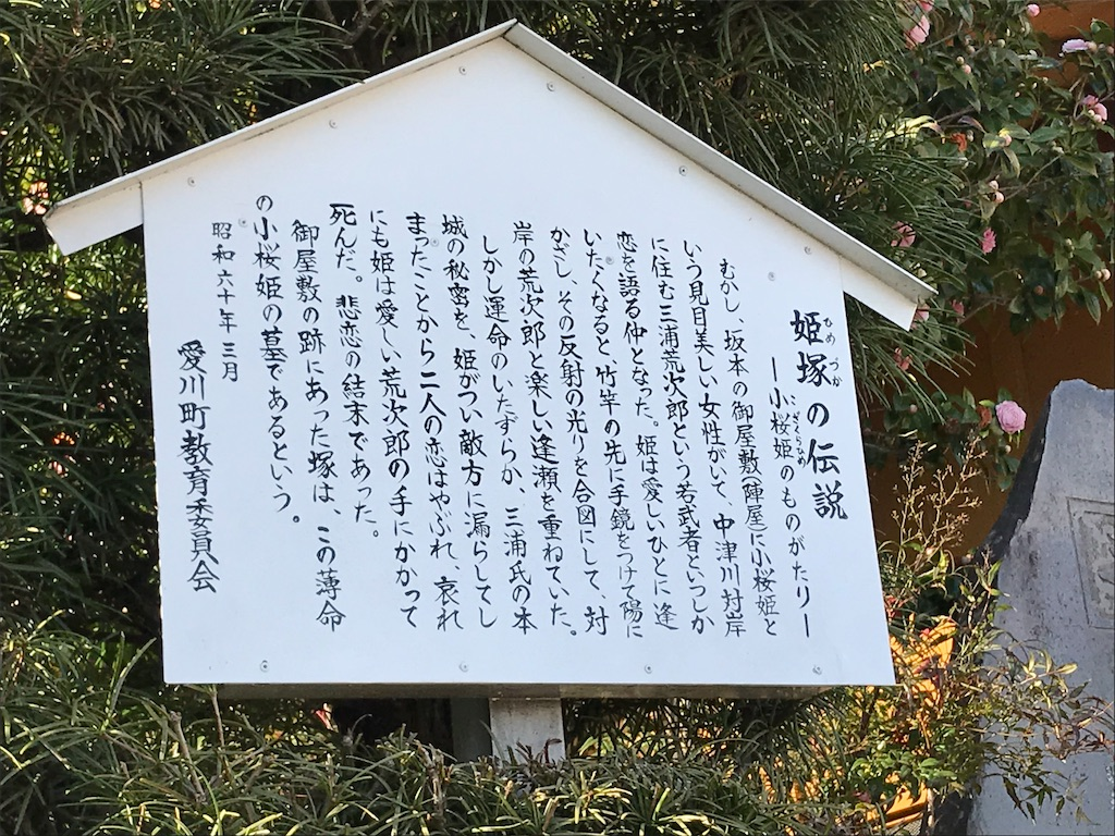 f:id:yokohamamiuken:20190404014616j:image