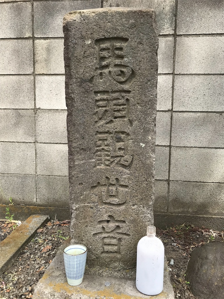 f:id:yokohamamiuken:20190405215332j:image