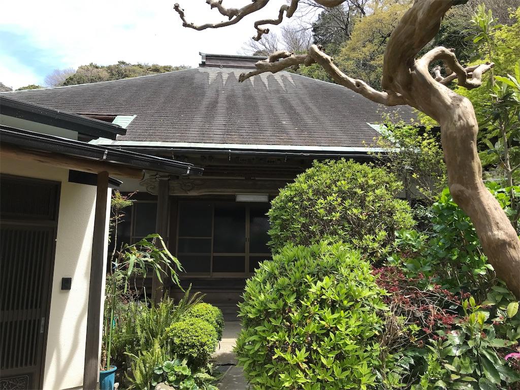 f:id:yokohamamiuken:20190405215938j:image