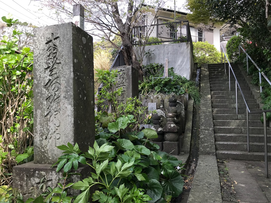 f:id:yokohamamiuken:20190405220040j:image