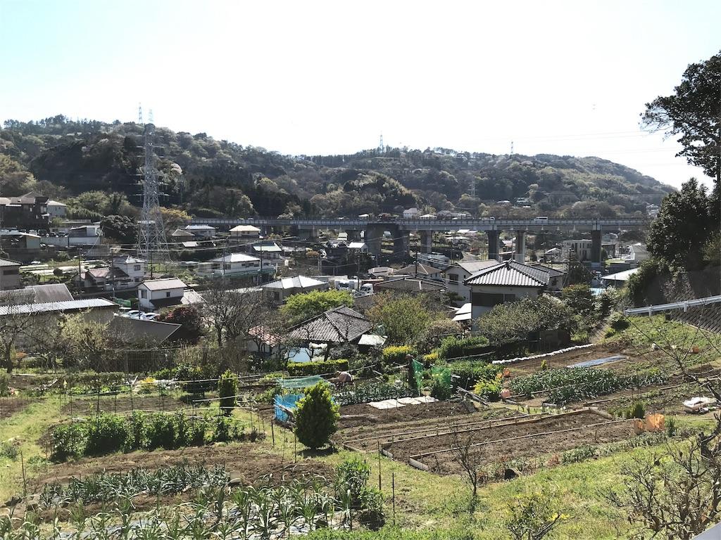 f:id:yokohamamiuken:20190406041553j:image