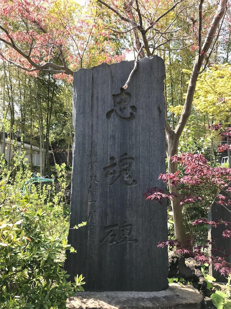 f:id:yokohamamiuken:20190409013451j:image