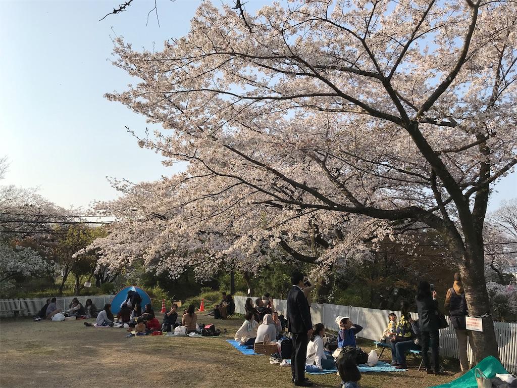 f:id:yokohamamiuken:20190415193614j:image