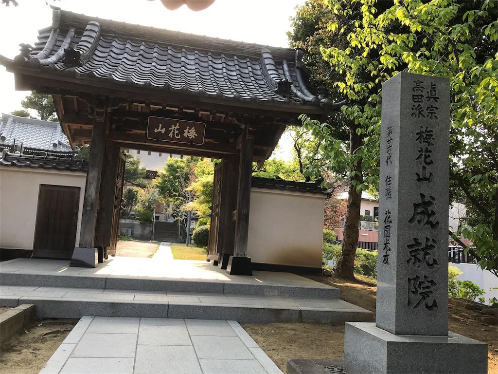 f:id:yokohamamiuken:20190421081051j:image