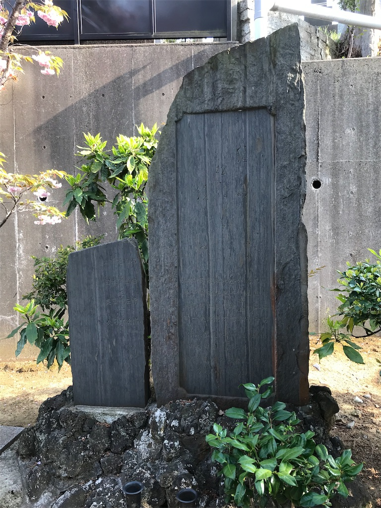 f:id:yokohamamiuken:20190421081232j:image