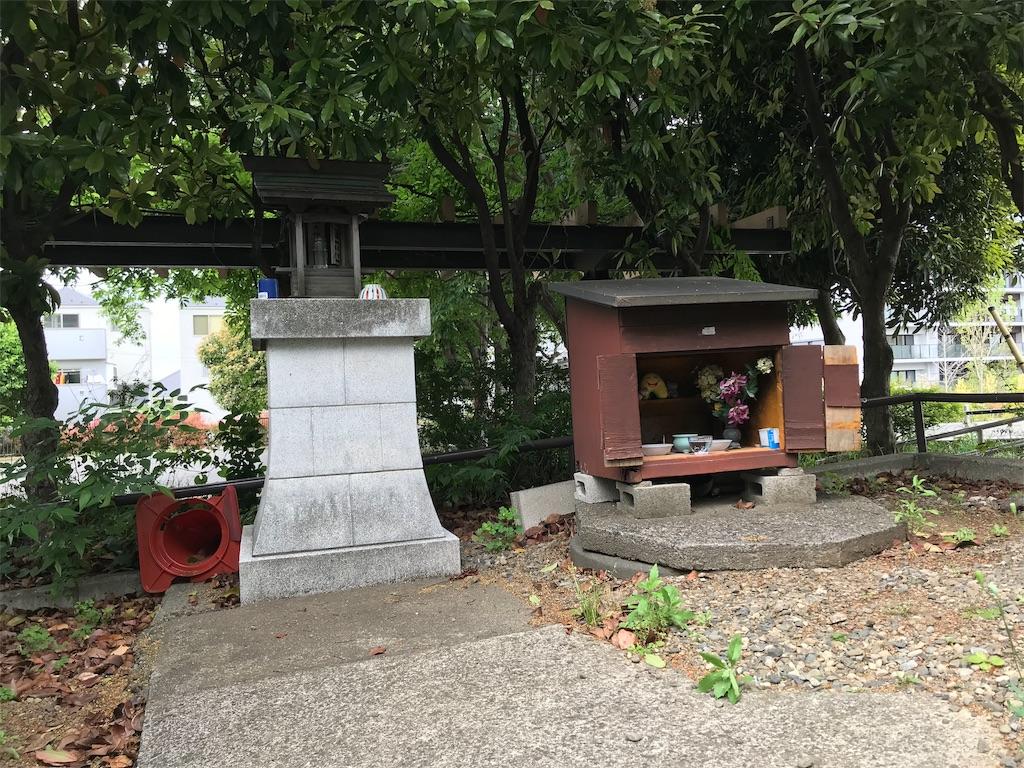 f:id:yokohamamiuken:20190509154615j:image